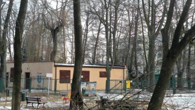 Photo of OSTRE CIĘCIA CZEKAJĄ PARK ŚWIĘTOJAŃSKI