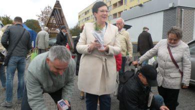 Photo of ANNA MILCZANOWSKA PODSUMOWAŁA KAMPANIĘ. DĘBY I SOSNY DLA CHĘTNYCH