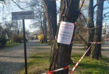 Photo of Radomszczanie łamią zakaz gromadzenia się. Policja interweniuje