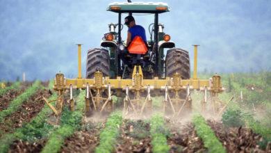 Photo of Dopłaty 2020: już połowa rolników złożyła wniosek