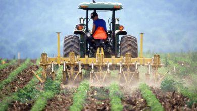 Photo of Pomoc covidowa dla rolników