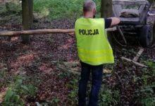 Photo of Tragiczny wypadek w gminie Przedbórz. 66-latek zginął jadąc wozem konnym