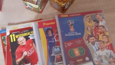 Photo of Kilkuletni Kuba przekazał kolekcję kart piłkarzy aby wspomóc bezdomne zwierzęta