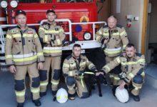 Photo of Strażacy uratowali psa, który wpadł do studni